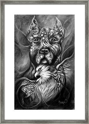 American Pitbull Framed Print by Patricia Lintner