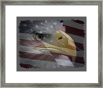 American Pride 3 Framed Print