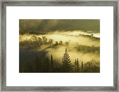 Framed Print featuring the photograph American River Canyon In The Fog by Sherri Meyer