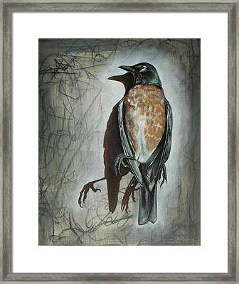 Framed Print featuring the mixed media American Robin by Sheri Howe
