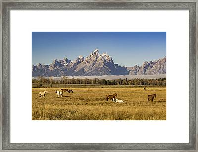 American West Framed Print by Peter Irwindale