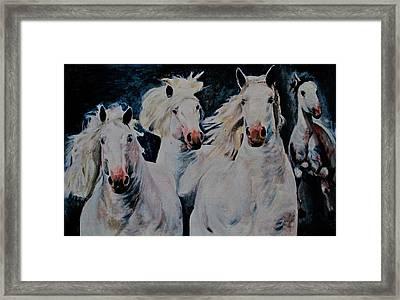 American White Framed Print