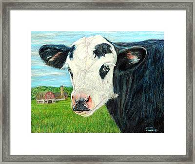 Americana Calf Framed Print by Angela Finney