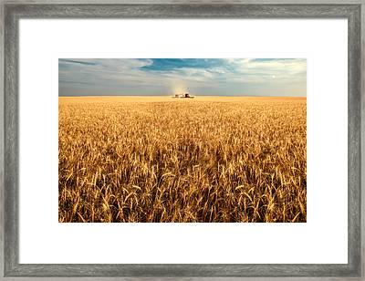 America's Breadbasket Framed Print by Todd Klassy