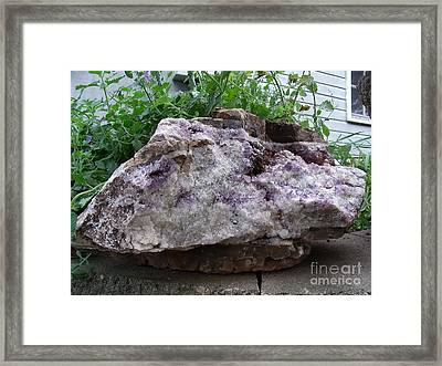 Amethyst Blooms Framed Print by The Stone Age