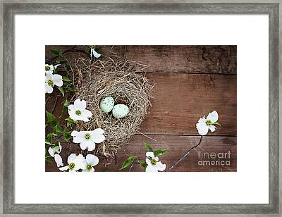 Framed Print featuring the photograph Amid The Dogwood Blossoms by Stephanie Frey