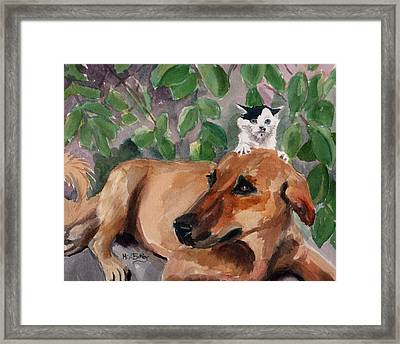 Amira And Junior Framed Print