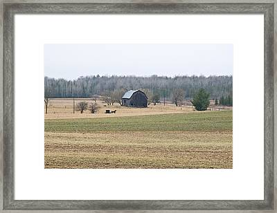 Framed Print featuring the photograph Amish Country 0754 by Michael Peychich