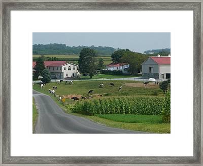 Amish Country Road Framed Print by Lori Seaman