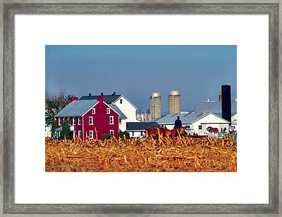 Amish Farm Framed Print by Thomas R Fletcher