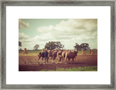 Framed Print featuring the photograph Amish Farming by Joel Witmeyer