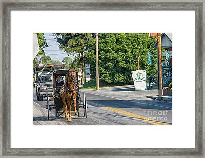 Framed Print featuring the photograph Amish Girl On The Road by Patricia Hofmeester