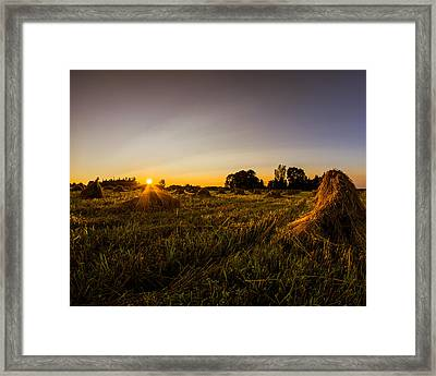 Framed Print featuring the photograph Amish Harvest by Chris Bordeleau