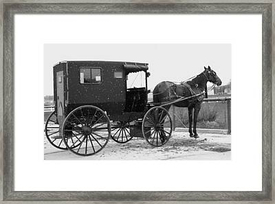 Amish Horse And Buggy In Snow Black And White Framed Print