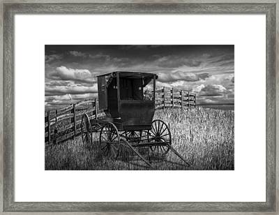 Amish Horse Buggy In Black And White Framed Print