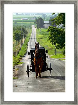 Amish Morning Commute Framed Print by Lawrence Boothby
