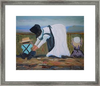 Amish Picking Peas Framed Print by Francine Frank