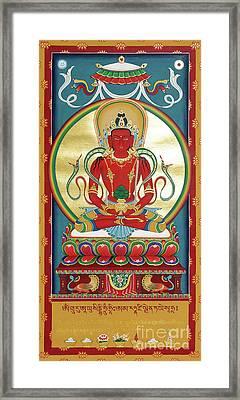 Amitayus Framed Print