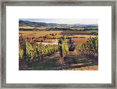 Amity Vineyard And Farmlands Framed Print