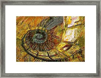 Ammonite Framed Print by Anne Weirich