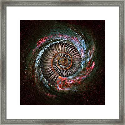 Ammonite Galaxy Framed Print