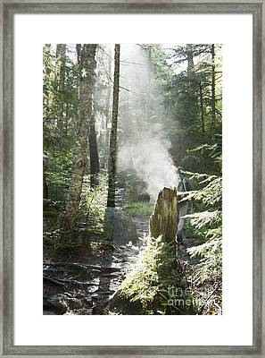 Ammonoosuc Ravine Trail - White Mountains New Hampshire Usa Framed Print