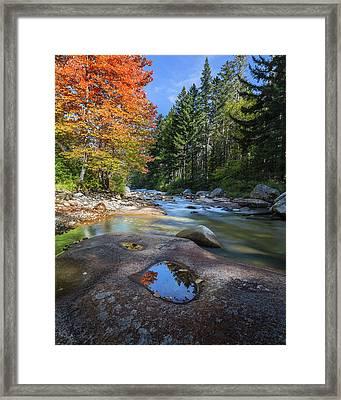 Ammonoosuc River Framed Print by Bill Wakeley