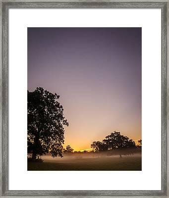 Among Mist And Fog Framed Print by Chris Bordeleau