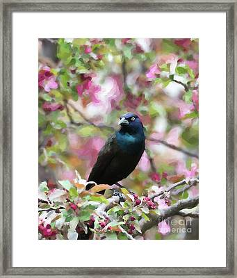 Among The Blooms Framed Print