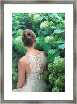 Among The Hydrangeas Framed Print by Anna Rose Bain