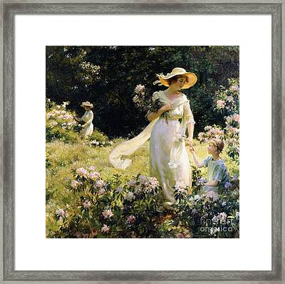 Among The Laurel Blossoms Framed Print by Charles Courtney Curran