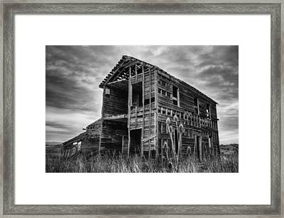 Among The Weeds - Monochrome Framed Print