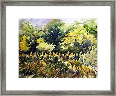 Amongst The Goldenrods Framed Print by Chito Gonzaga