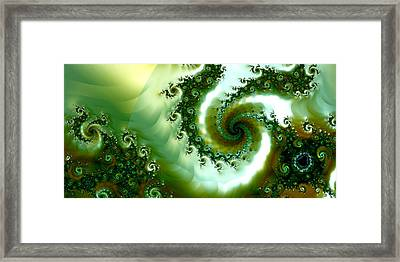 Amongst The Seaweed Framed Print by Sharon Lisa Clarke