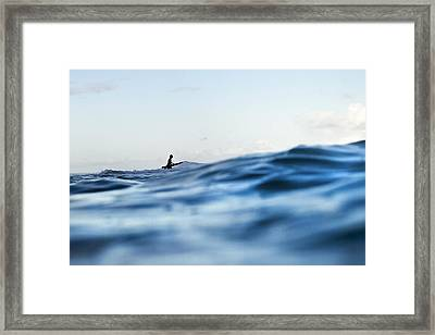 Amongst The Waves Framed Print by Sean Davey