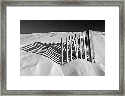 Amoreira Shadows Framed Print