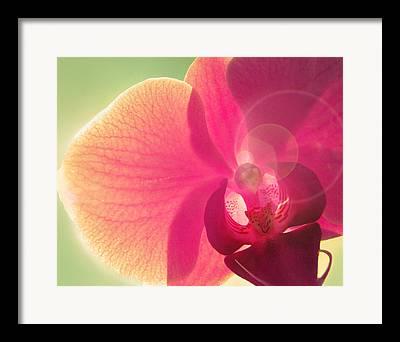 Pink Lipstick Photographs Framed Prints
