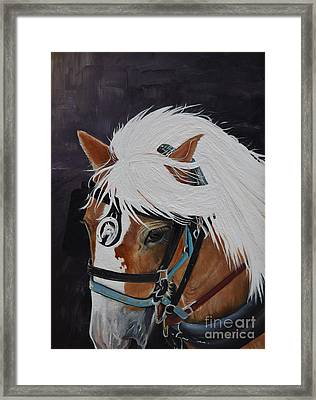 Amos - Haflinger - Horse Framed Print