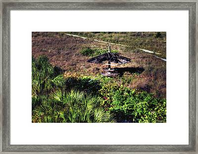 Framed Print featuring the photograph Almost Paradise by Tom Prendergast