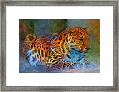 Amur Leopard Framed Print by Caito Junqueira