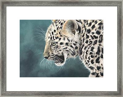 Amur Leopard Cub Framed Print by Clive Meredith