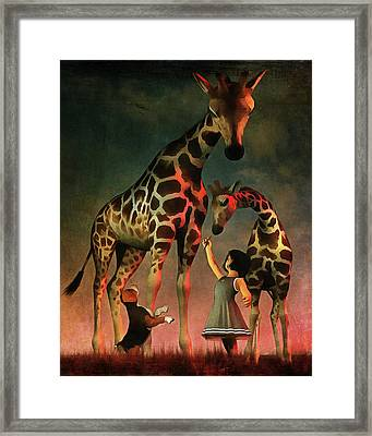 Amy And Buddy With The Giraffes Framed Print