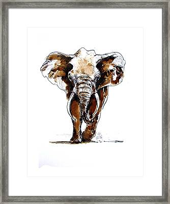 Amy Grown Framed Print