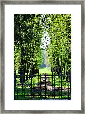 An Alley In Spring Framed Print by Dutourdumonde Photography
