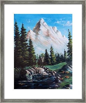 An Alpine Stream Framed Print