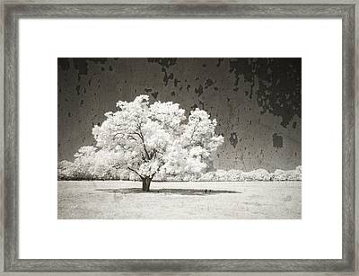 An Altered State Framed Print