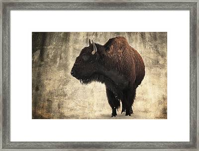 An American Heritage Framed Print by Brian Gustafson