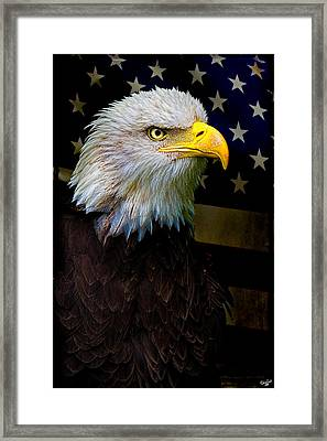 An American Icon Framed Print