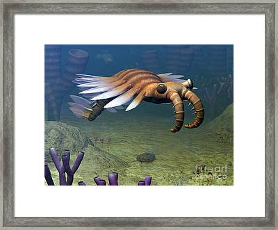 An Anomalocaris Explores A Middle Framed Print by Walter Myers