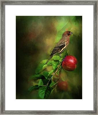 An Apple A Day Framed Print by Lana Trussell